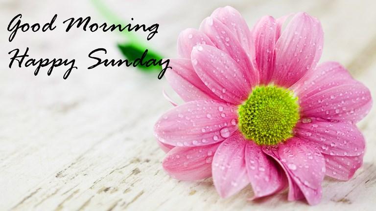 Good Morning images, Good Morning photos, Good Morning pic ...